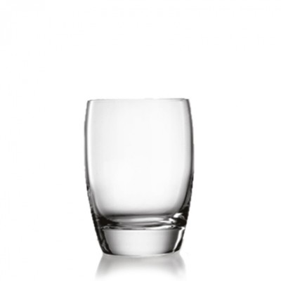 Luigi Bormioli Michelangelo Tumblers- Set of 4