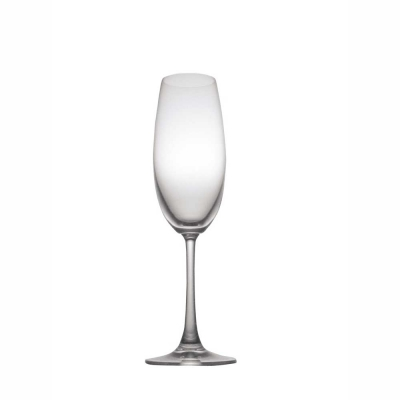 Thomas DiVino Champagne Glasses - Set of 6